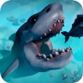 feedandgrowfish手机版