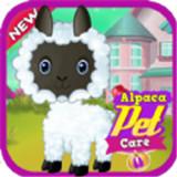 羊驼宠物护理
