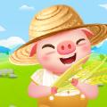 金币养猪场红包版
