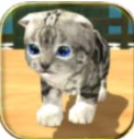 猫猫模拟器