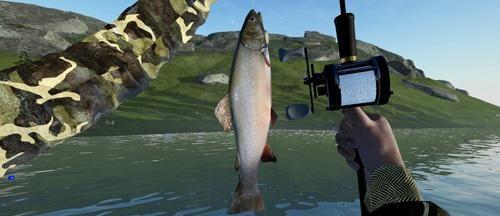 拟真模拟钓鱼的游戏大全