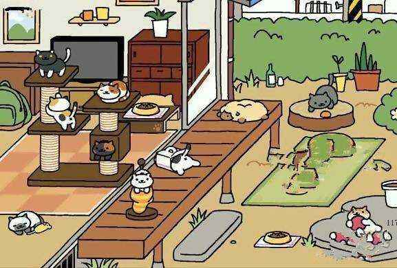 養貓賺錢的游戲