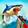 鲨鱼狩猎动物射击