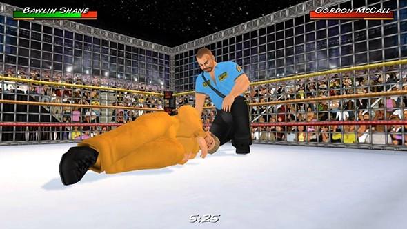摔跤革命3D图3