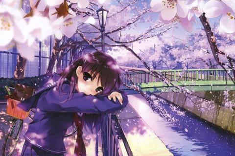 樱花系列游戏大全