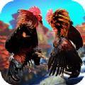 街鸡对战斗鸡PK模拟器游戏