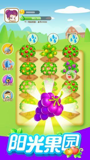 阳光果园赚钱版图4