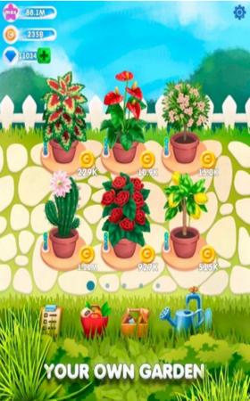 闲置植物花园图2